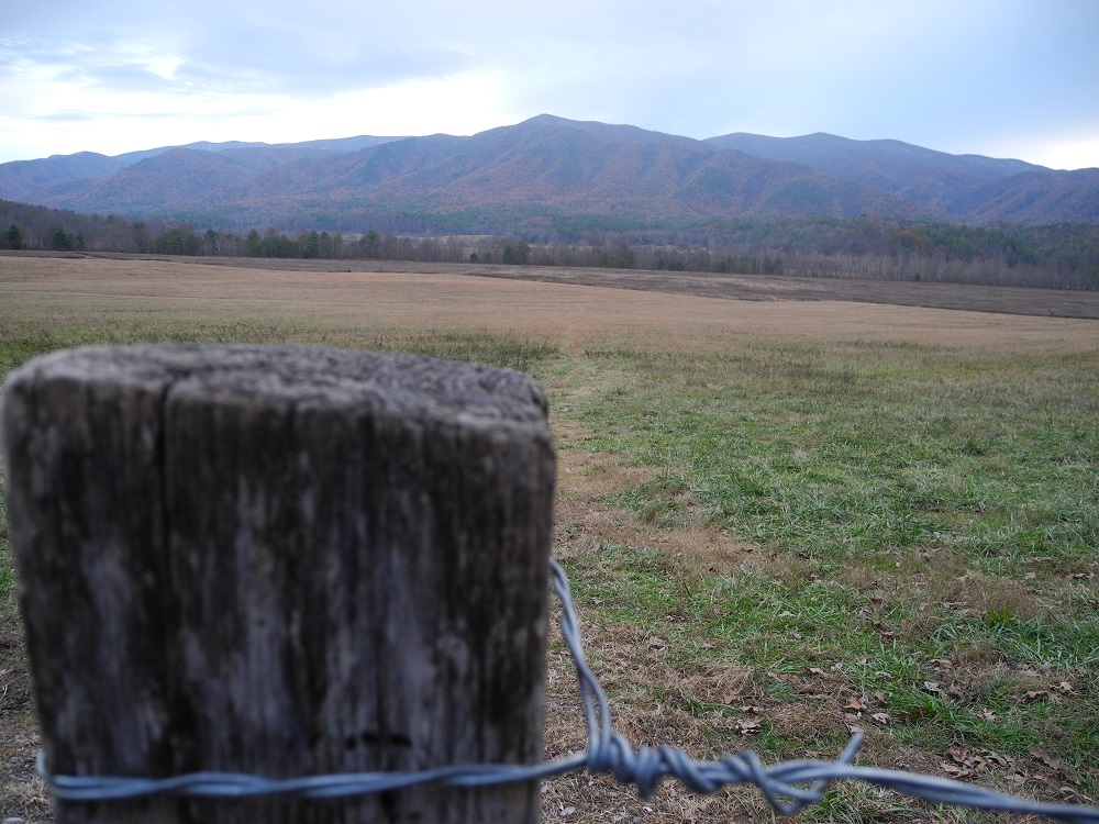 Cades Cove in the fall.