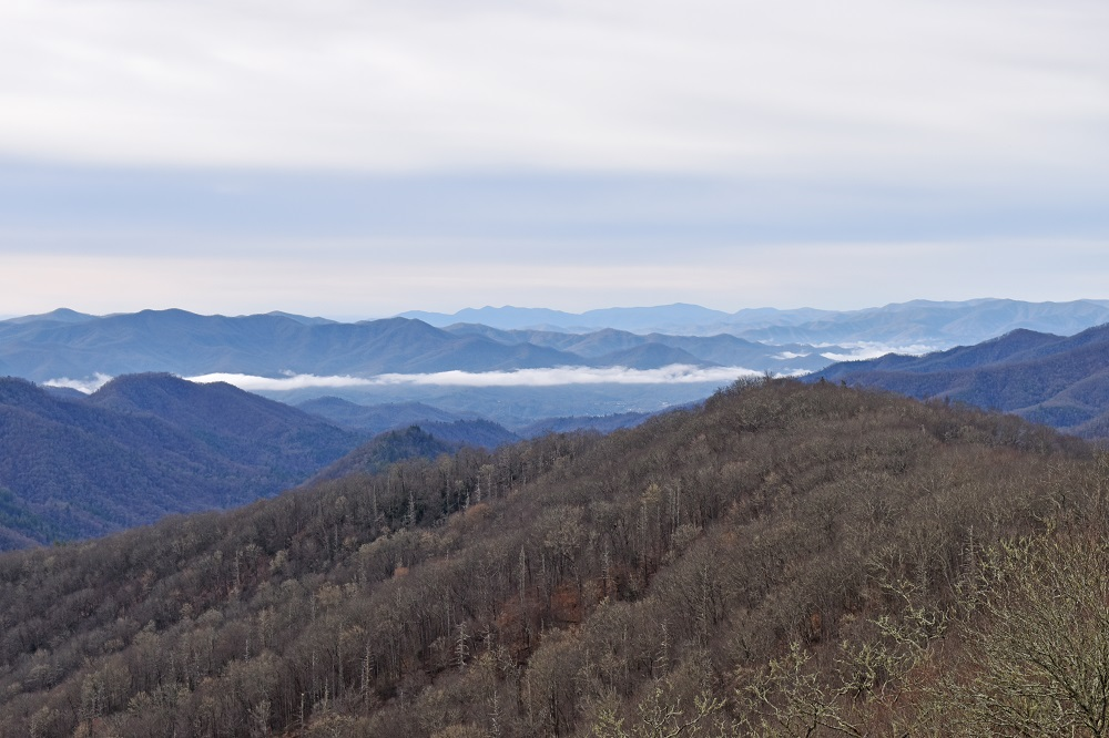 Smoky Mountains in March